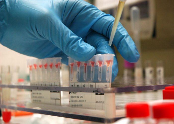 определить отцовство по группе крови